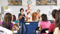 A teenage girl conducts a presentation in a science classroom.