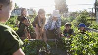 Teacher helping students plant a garden