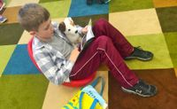 Student reading a book in a flexible seating environment