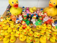 Teacher's collection of rubber duck toys