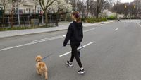 Teenage girl walks dog across empty city street.