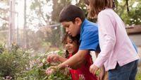 Elementary school children in garden