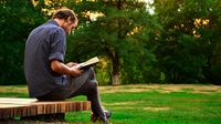 Man reading a book while sitting on a park bench