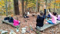 Outdoor classroom in the woods