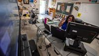 Spanish teacher conducts class remotely from her classroom