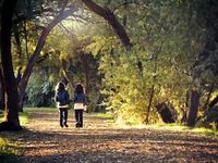 Two youngs girls walking through trees holding hands