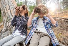 Children playing with pine cones in forest