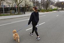 Teenage girl walks dog across empty city street.