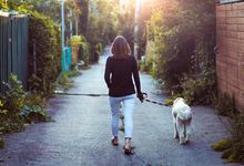 Woman walks dog down alley