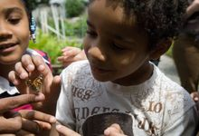 Elementary students examine a butterfly outdoors