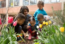 Young elementary students inspect flowers outside with a magnifying glass
