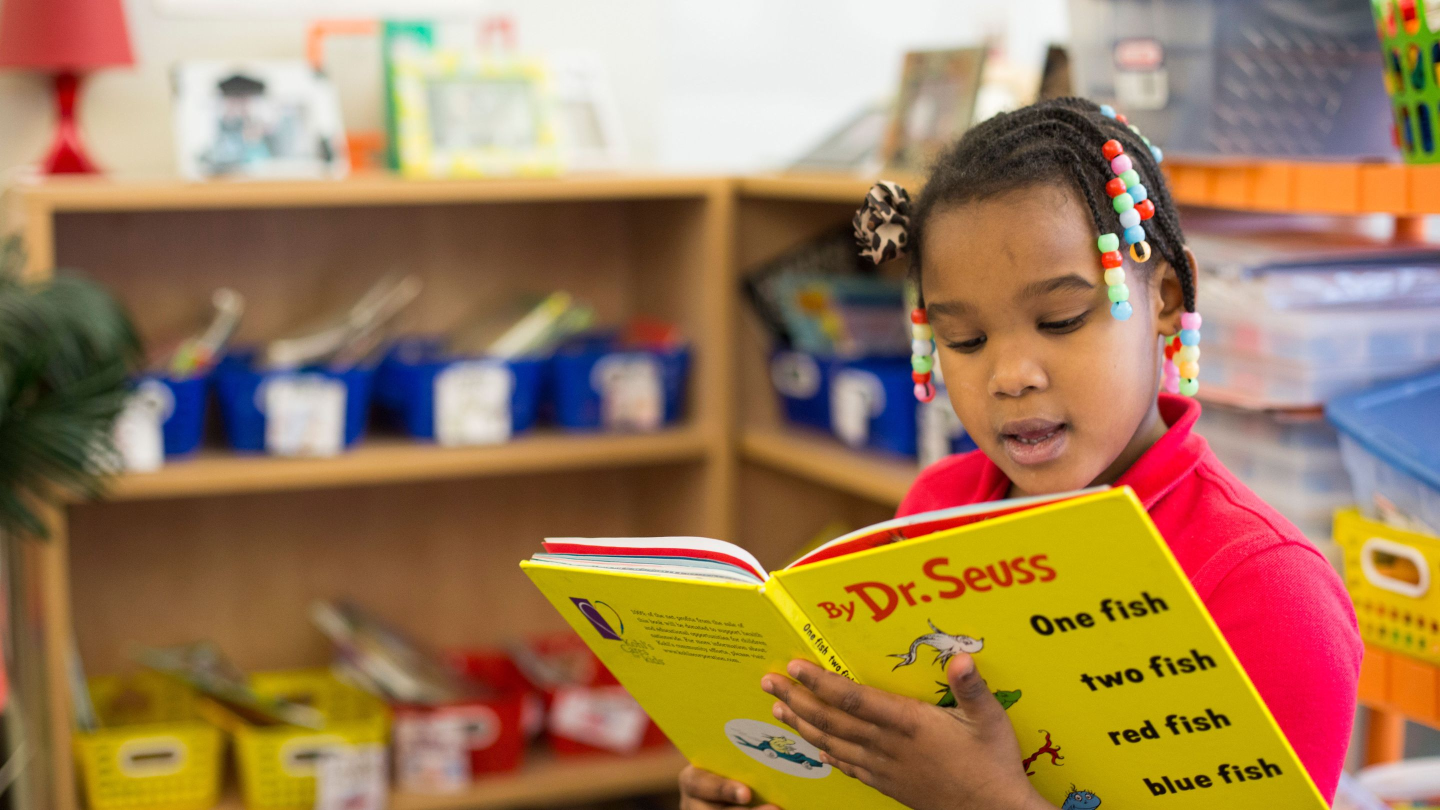 Developing a Love of Reading in Students
