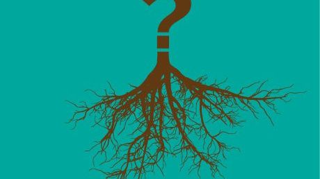 Critical Thinking Pathways