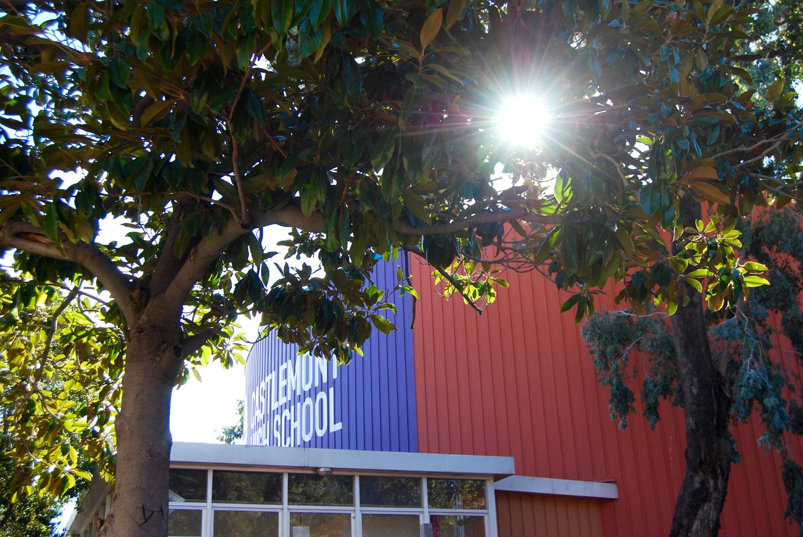 Located in East Oakland, Castlemont High School uses a network of adults and community supports to help students succeed.