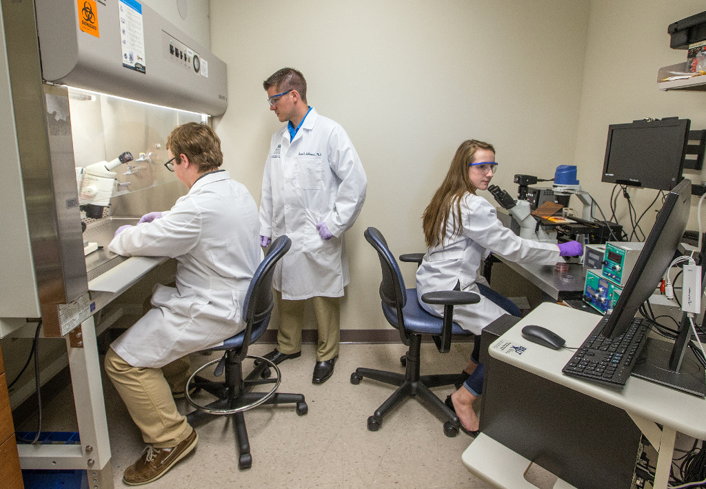 Students work in a research lab at the medical college of Wisconsin.
