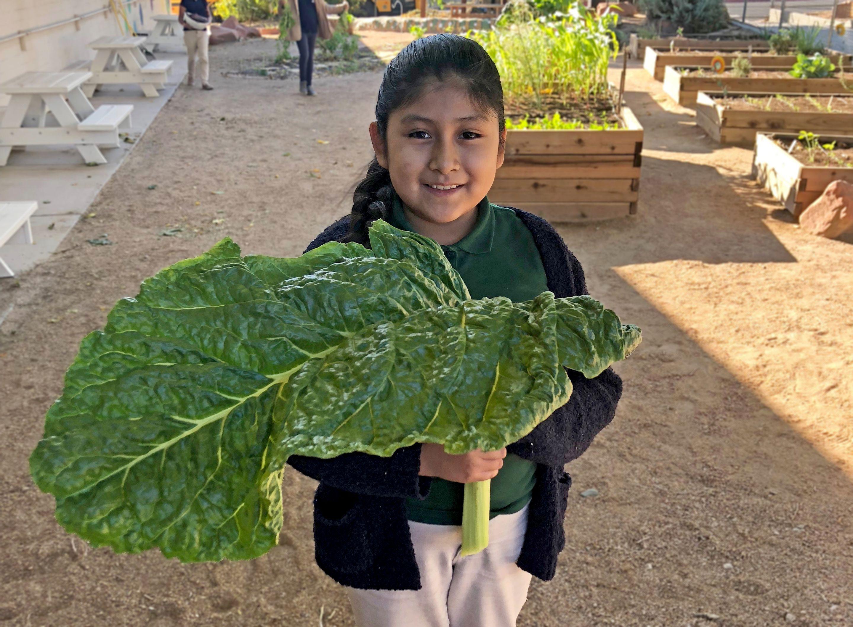 Student holding vegetables in a school garden