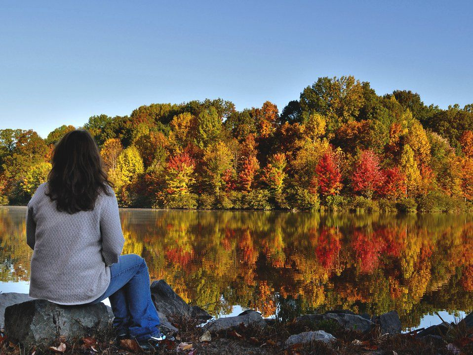 photo of a woman looking at an autumn landscape