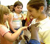 Seventh graders delight in sharing their knowledge of local animals with younger students.