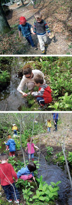 Over the River and Through the Woods:  Preschoolers in Mystic, Connecticut, study rocks, plants, and whatever else catches their fancy as they explore.
