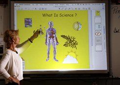 Teacher Sue Holland and her beloved interactive whiteboard. Credit: Elena Dorfman