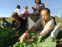 VIDEO: The Edible Schoolyard: Seed-to-Table Learning