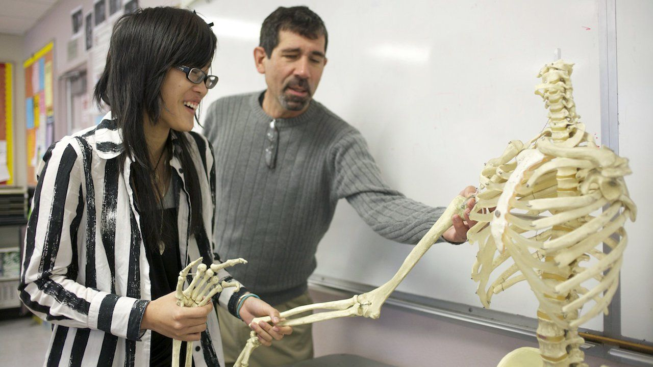 Girl holding the lower arm of a skeleton while her teacher points out something near the shoulder