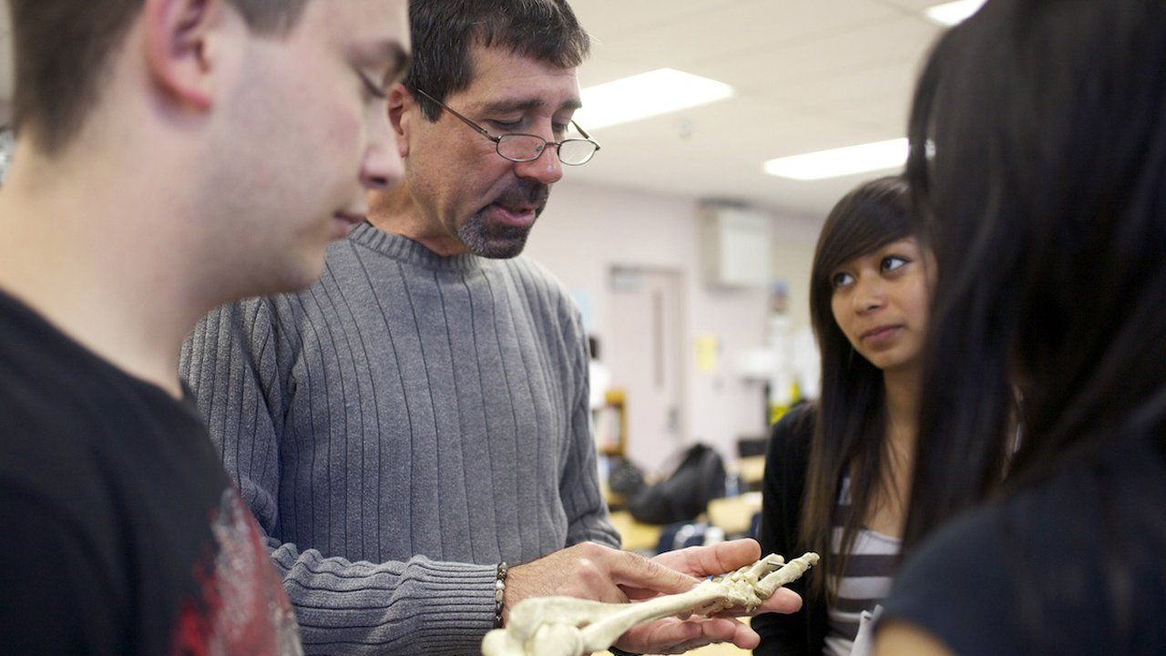 Teacher and three students looking at a human skeleton