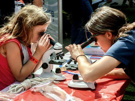 Two girls across from each other at a table looking through microscopes