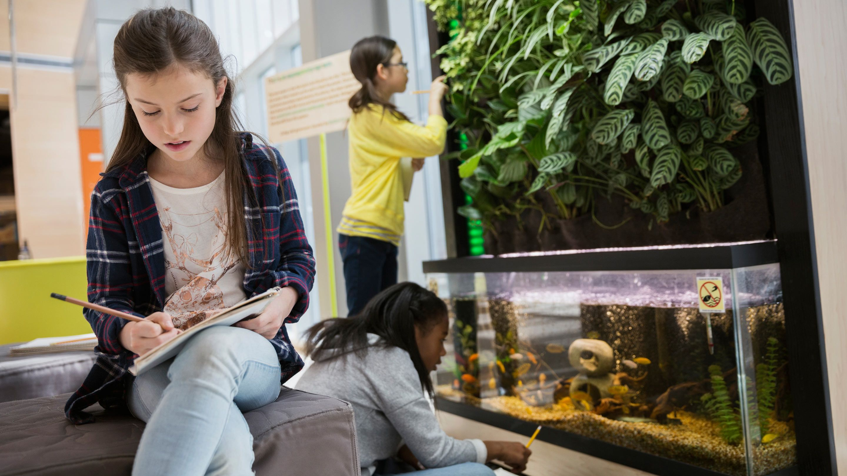 Students examine and write about an aquarium, a plant, and other things.