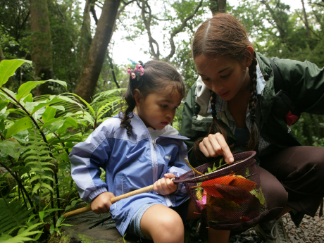 Older girl pointing at something in a net held by a younger girl in a forest
