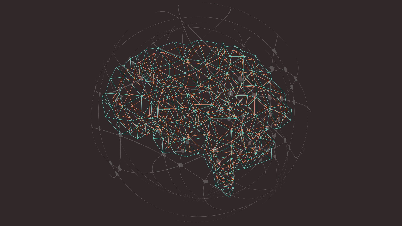 Geometric line drawing of a brain.