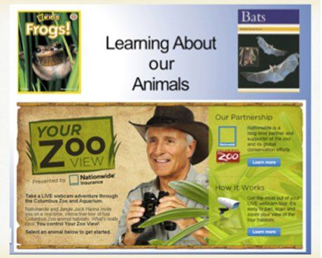 Your Zoo View