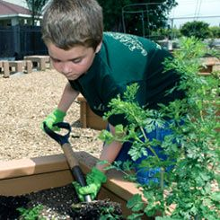 First and second graders tend the garden that serves as a learning lab for the entire school.