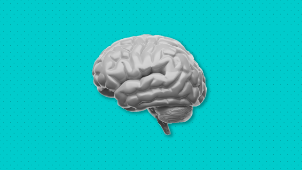 Graphic of a brain