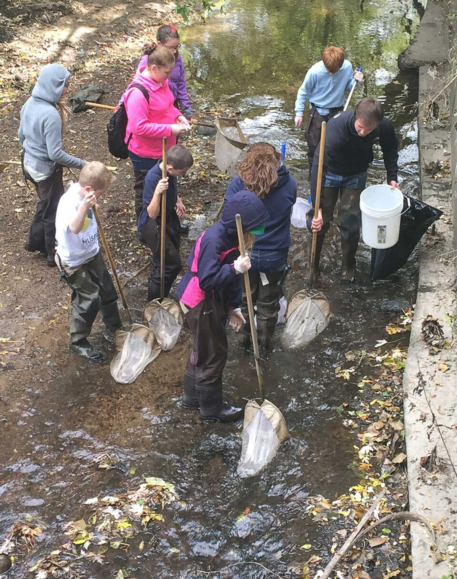 Museum School students collect macroinvertebrates in a creek near their school to learn about invasive species.