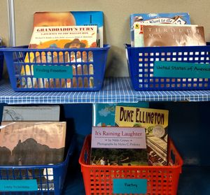 A classroom library consisting of baskets full of books sorted by genre