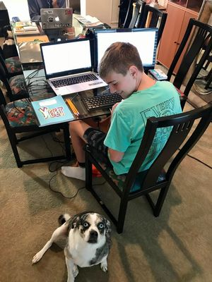 A student sits with his dog during remote learning.