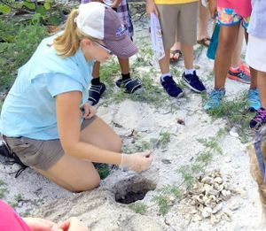 A woman shows students a sea turtle nest.