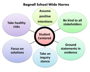 graphic showing school norms
