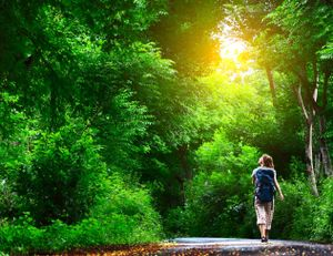 A young woman is walking on a road path surrounded by trees.