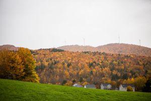 Fall foliage in Fletcher, Vermont.