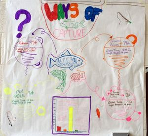 Student diagram on the wall showing stages of fish capture
